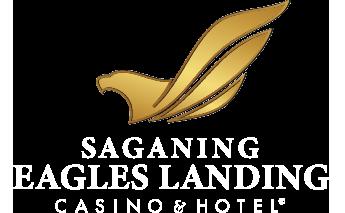 Soaring eagle bingo schedule 2020